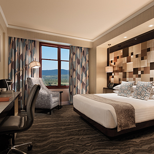 king room - Poconos suite