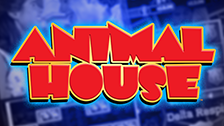 animal house slot game