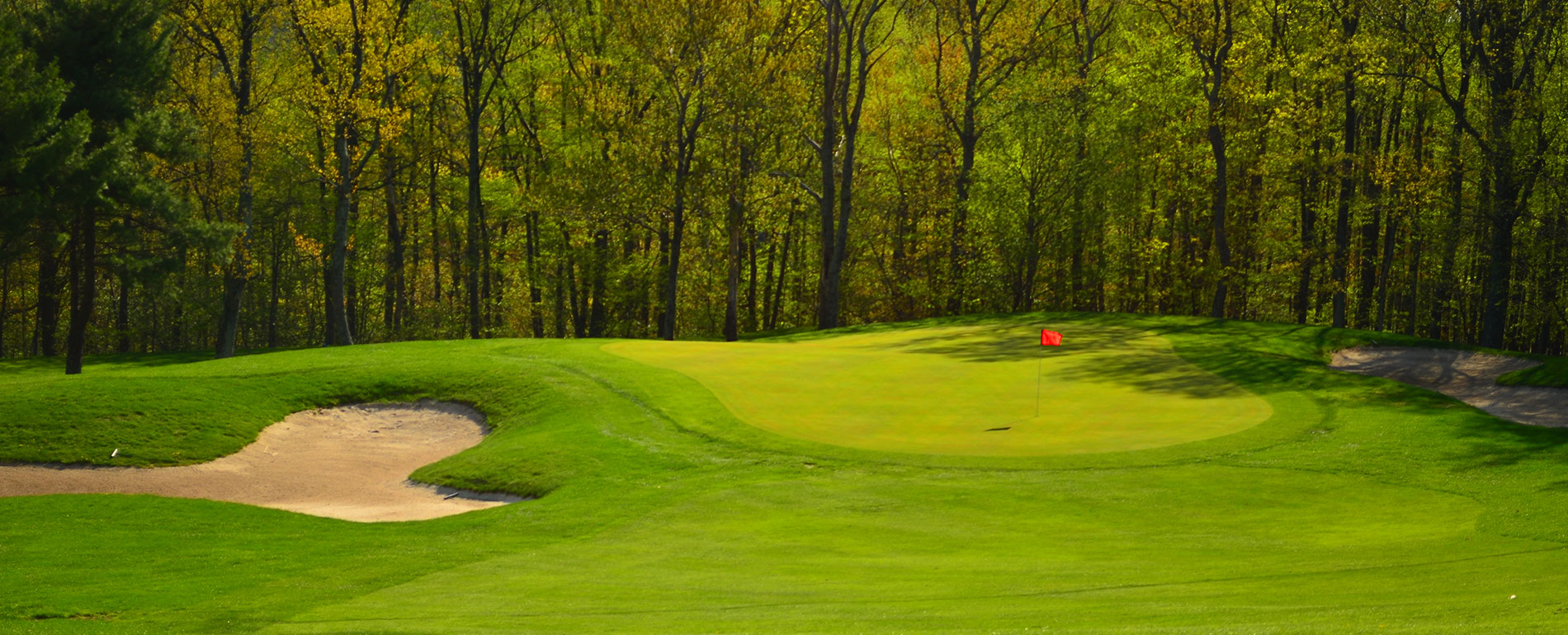 Pocono Golf course woods
