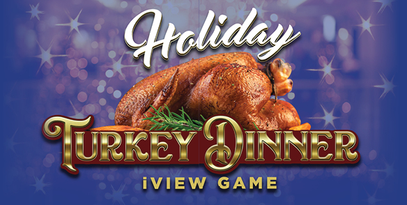 Holiday Turkey Dinner iView Game