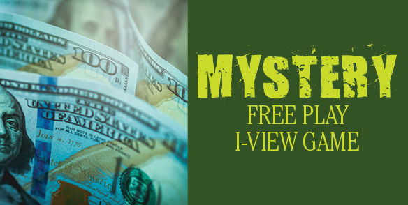 Mystery Free Play i-view Game