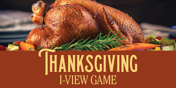 Thanksgiving I-View Game