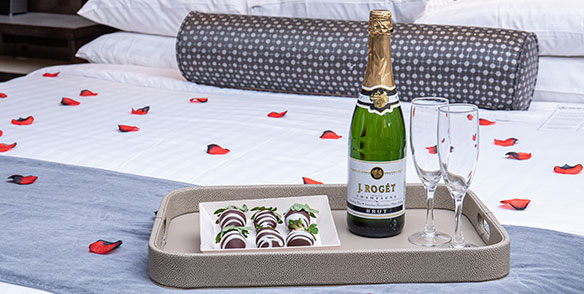 romance package - chocolate covered straberries, house champagne, rose petals - preset amenities